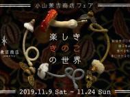 Koyama_Kinoko_2019_FukumoriHP